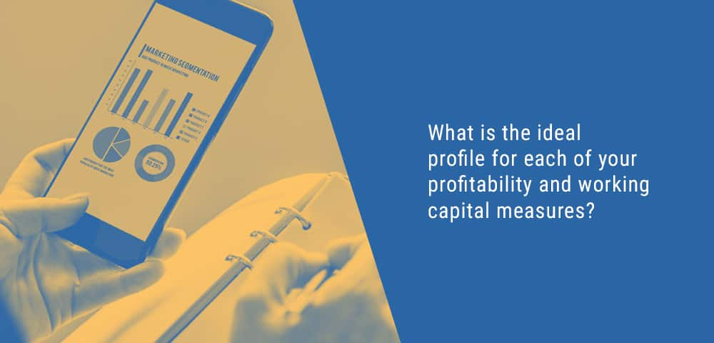 ideal profile for profitability and working capital measures